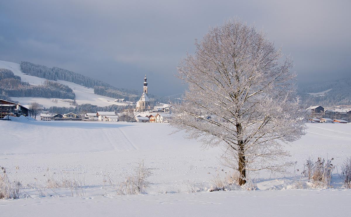 Pfarrkirche Maria Himmelfahrt 4