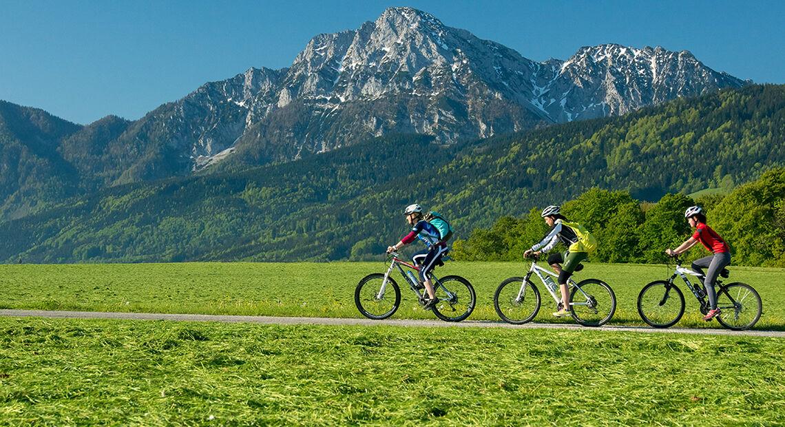 Radfahren Mountainbike
